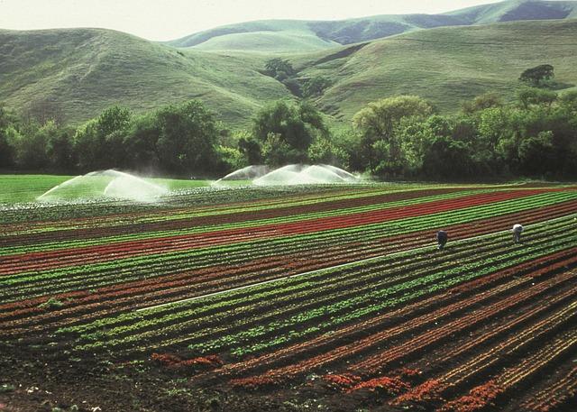 Fadnavis Scraps 94 Irrigation Tenders; Pawar under Scanner