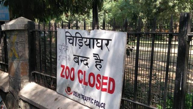 Avian flu scares Delhi as more birds die